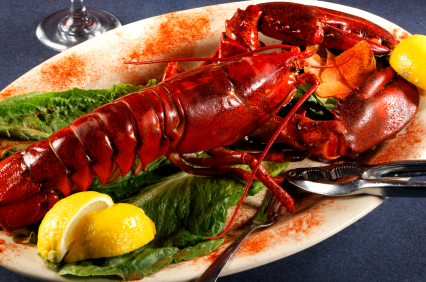 A nice red lobster on its plate with lettuce and lemon garnish: perfect for your next meal! Call us at 1-877-254-0222 to get yours today!